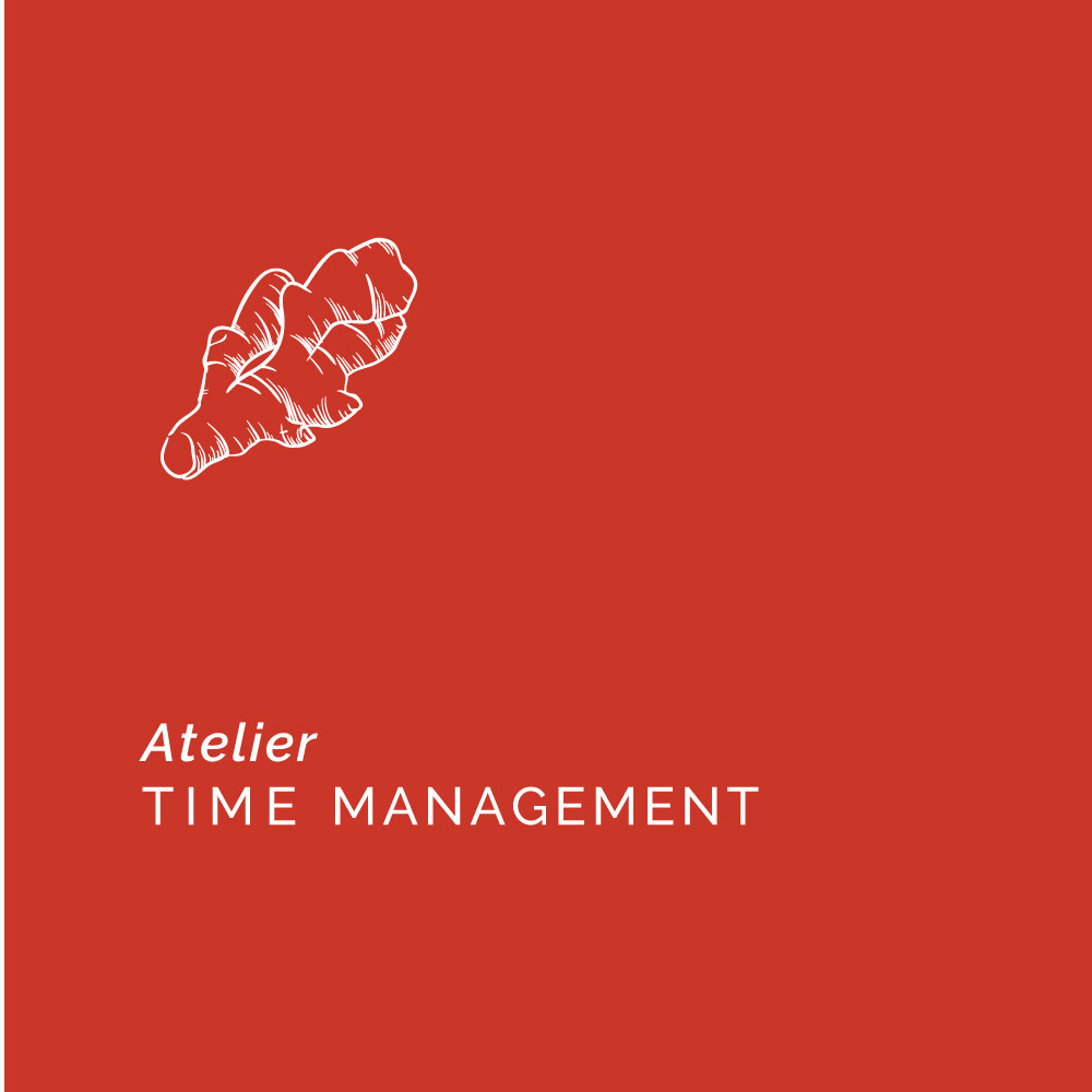 Time Management Andreea Petre Ginger Time